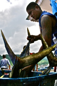 Tuna Fishermen in Indonesia (C) Ret Talbot Photography