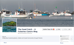 Good Catch Blog Facebook Page Live!