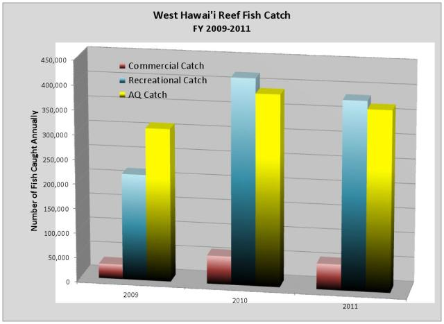 WH Reef Fish Catch 09-11