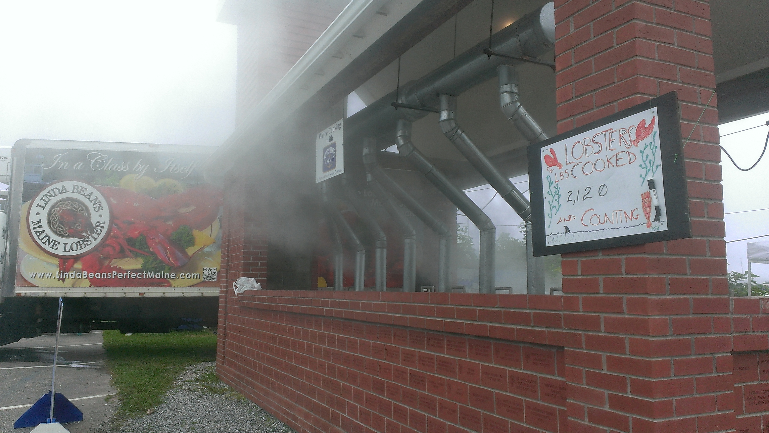 PETA Protest of Maine Lobster Festival Grounded | Good Catch Blog