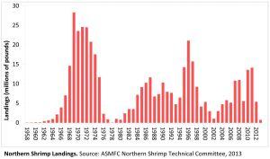 Northern Shrimp Landings (Source: ASMFC Northern Shrimp Technical Committee, 2013)