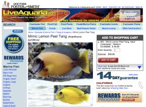 """LiveAquaria, a popular online vendor of aquarium animals, sells the so-called """"mimic lemon peel tang"""" for around $50.00."""