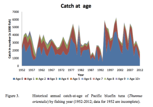 """Historical catches (1952-2012) are predominately composed of juvenile PBF, but since the early 1990s, the catch of age-0 PBF has increased significantly."" (2014 ISC Stock Assessment Report)"