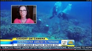 Hawaii Underwater Confrontation